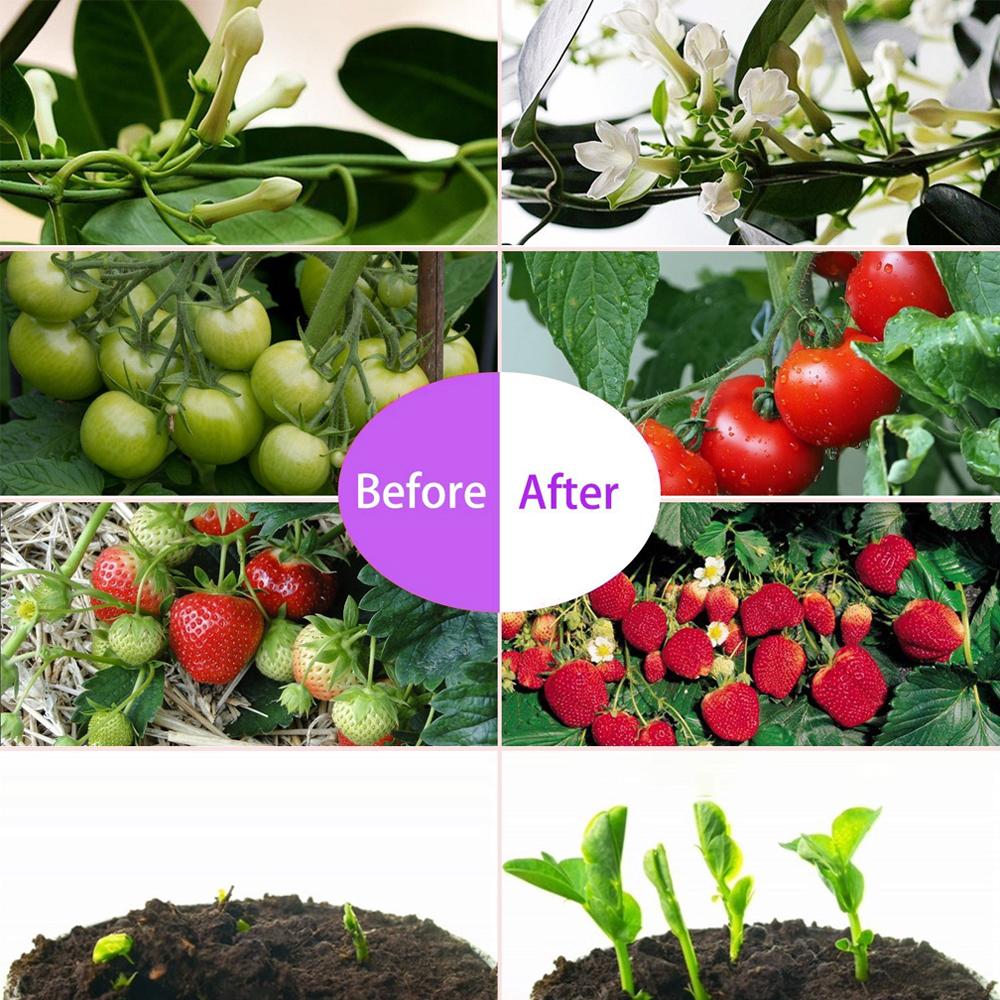 1000w led plant grow light full spectrum lamp indoor greenhouse veg flower hot 663862244298 ebay. Black Bedroom Furniture Sets. Home Design Ideas