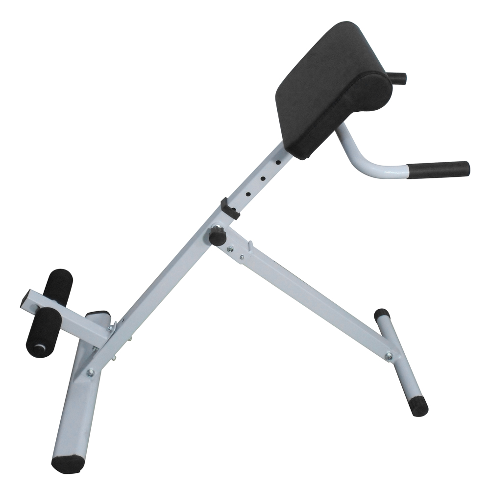 Adjustable Ab Back Bench Hyperextension Roman Chair For